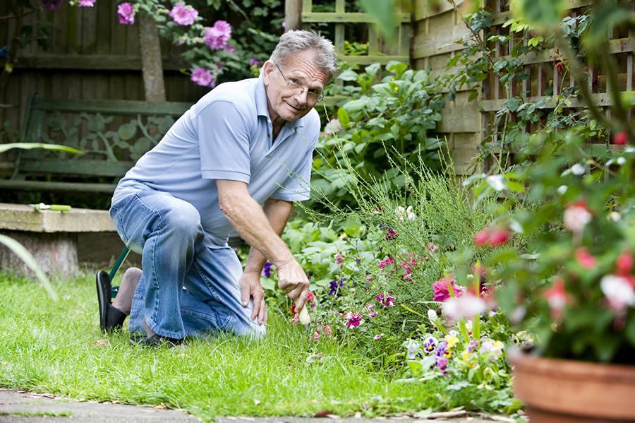 Садовод картинки и фото