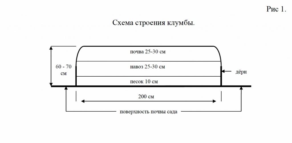 Схема строения клумбы для Абрикосов